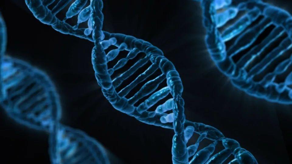 肺癌的驱动基因与靶向药物为精准医疗树立了成功样板:还有更多的期待