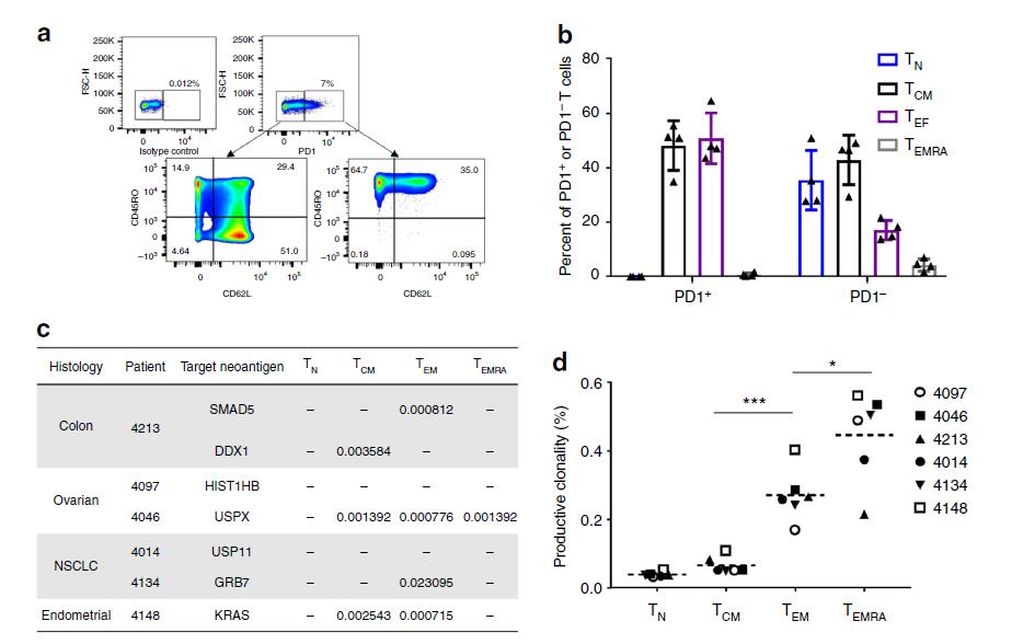 鉴定TCR新策略:外周血记忆性T细胞的新价值