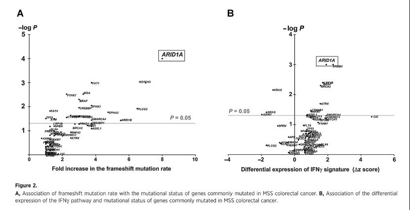 文献速递:ARID1A基因突变——微卫星稳定的结直肠癌中的免疫活跃亚群